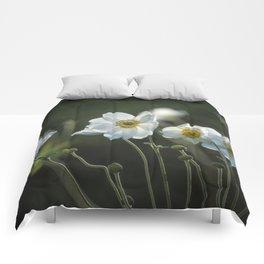 Graceful Anemones, No. 2 Comforters