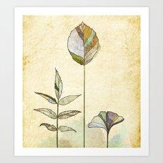 Leaf Study Art Print