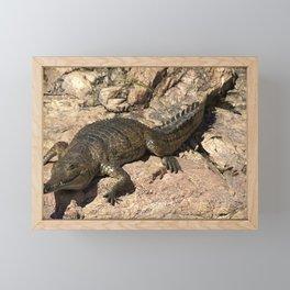 Fresh Water Crocodile Framed Mini Art Print