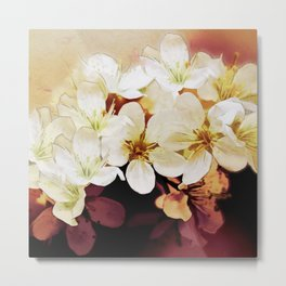 Blossom 06-18 Metal Print