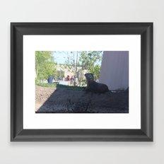 :O Otter Framed Art Print