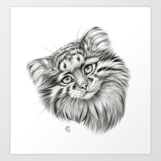 Pallas's Cat G2012-51 Art Print