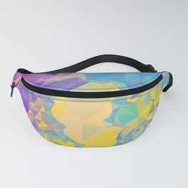 Polystone - Abstract Art Fanny Pack