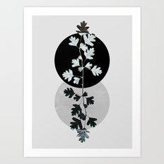 Geometry and Nature II Art Print