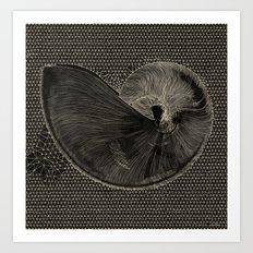 SEASHELL IN BLACK Art Print