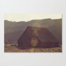 Summer Fields | 04 Canvas Print