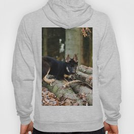 Cold snout playing in the forest Hoody
