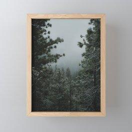 Backwoods Winter: Ponderosa Pines, Washington Framed Mini Art Print