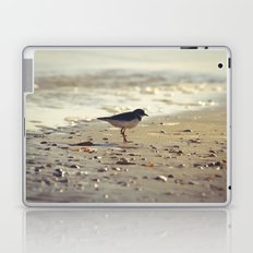 Evening Beside the Sea Laptop & iPad Skin