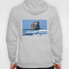 Witches Rock * Costa Rica Hoody