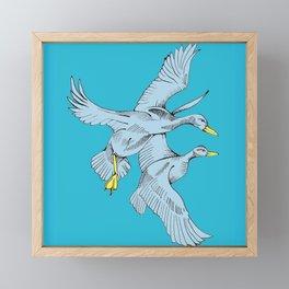 Two Grey Ducks in Blue Framed Mini Art Print