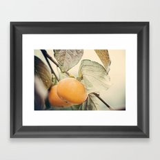 Autumn Peach Framed Art Print