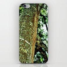 Lookingup iPhone & iPod Skin