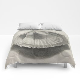 Cockle Shell Comforters