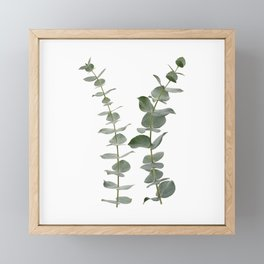 Eucalyptus Branches I Framed Mini Art Print