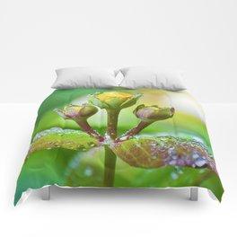 Refreshing nature Comforters