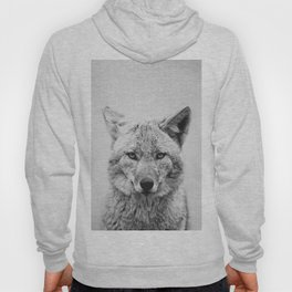 Coyote - Black & White Hoody