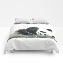 Panda bear Comforters