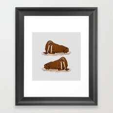 Pacific Walrus Framed Art Print