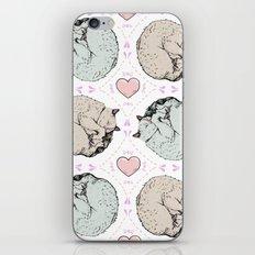 Sleepy Kitty Pattern iPhone & iPod Skin