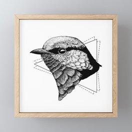 Splendid Fairywren 01 Framed Mini Art Print