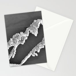 Frosted Plant 3 Stationery Cards