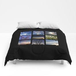Look Up 1 Comforters