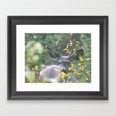 Like a deer in headlights Framed Art Print