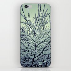 Wintree iPhone & iPod Skin