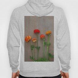 Orange Ranunculus flowers Hoody