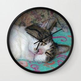 Honey Sleeping Wall Clock
