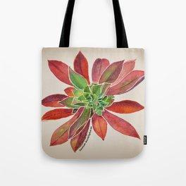 lovely Succulent Plants No.9 Tote Bag