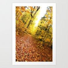 Leading Trail  Art Print