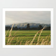 Coast range Art Print