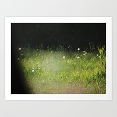 dandylights Art Print