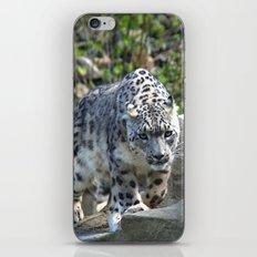 Snow leopard iPhone & iPod Skin