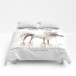 C is for Chinese Crested Comforters