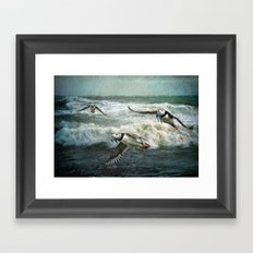 Puffins Returning From The Sea. Framed Art Print