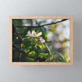 Flowers: I // Oregon Framed Mini Art Print