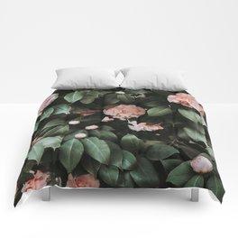 Light Pink Camellias Comforters