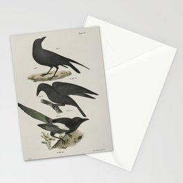 1290 51 The Raven (Corvus corax) 52 The Common Crow (Corvus americanus) 53 The Magpie (Pica caudata)26 Stationery Cards