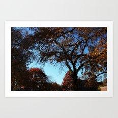 fallday Art Print