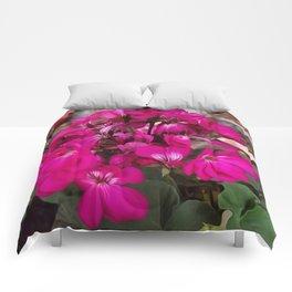 Pink Geranium Comforters