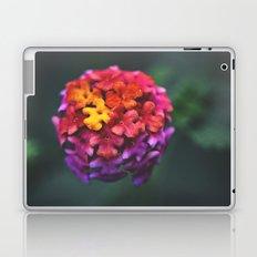 Spherical//Chromatic Laptop & iPad Skin