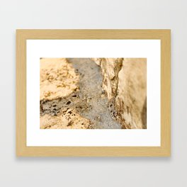 Stream of Bubbles Framed Art Print