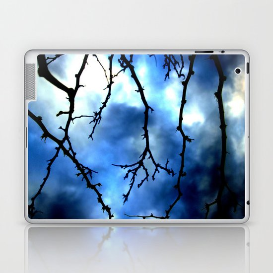 Storm Warning Laptop & iPad Skin