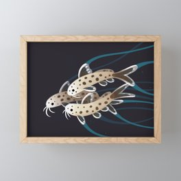 Leopard catfish Framed Mini Art Print