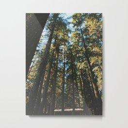 Enchanting Pacific Northwest Metal Print