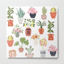 Indoor Garden Planters Metal Print