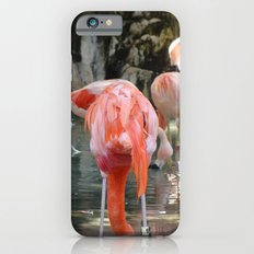 Pink Flamingos Slim Case iPhone 6s